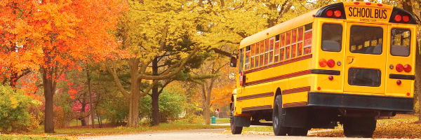 School Bus In Fall
