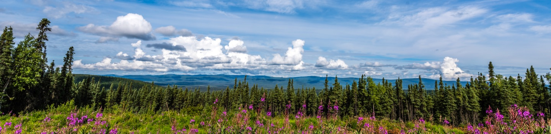 Photograph of Fairbanks AK