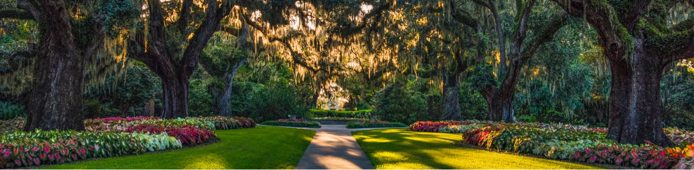 Photograph of South Carolina