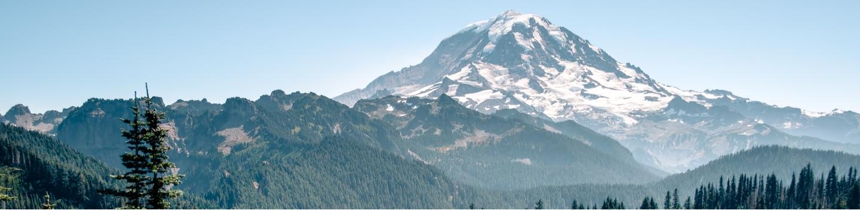 Photograph of Washington